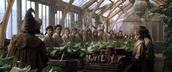 Harry Potter films-outdoor Hogwarts greenhouses