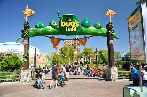 A Bug's Land