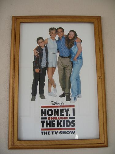 Honey, I Shrunk the Kids: The TV Show...?