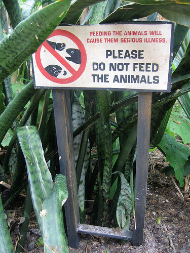 Please do not feed the animals