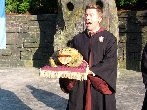Hogwarts frog choir