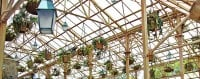 hogwarts-greenhouse-small