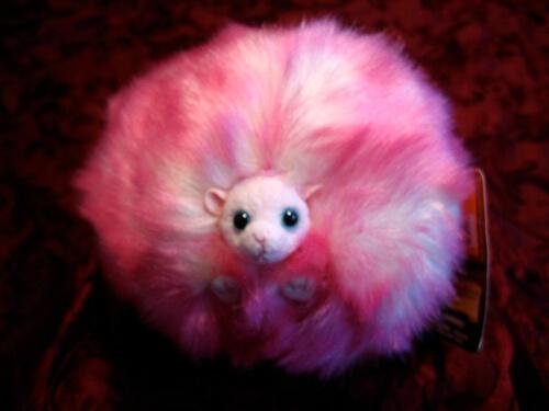 Pygmy Puff - $12.95