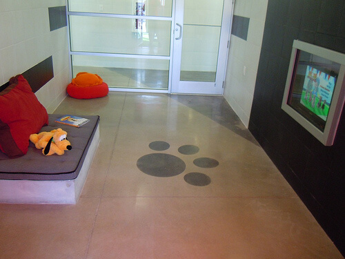 VIP Luxury Suite with bed and flat screen TV (for pets)