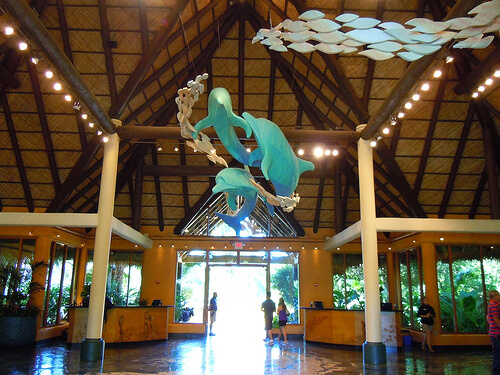 Discovery Cove check-in