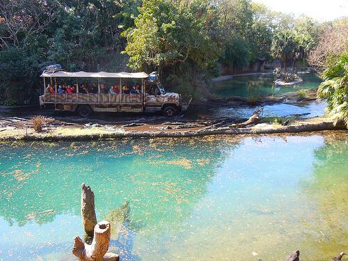 Wild Africa Trek hippo pool