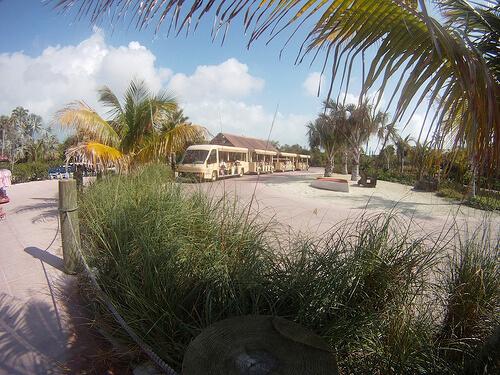 Tram - Castaway Cay