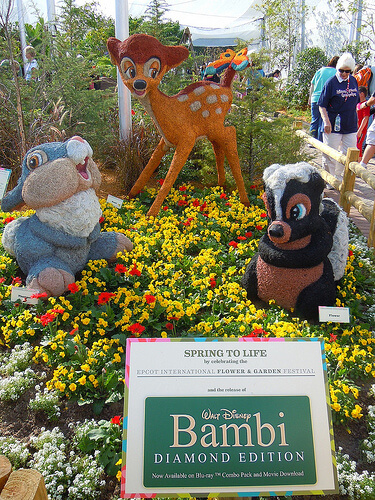 Bambi's Butterfly House