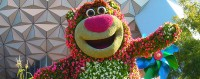 lotso-epcot-flower-and-garden
