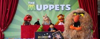 muppets-star
