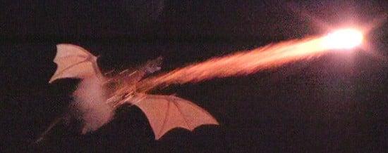 Flying Dragon Over the Magic Kingdom