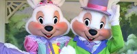 easter-bunny-disney