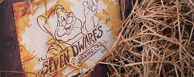 Walt Disney World delivers Seven Dwarfs Mine Train invitation with dedication planned for May in press preview event