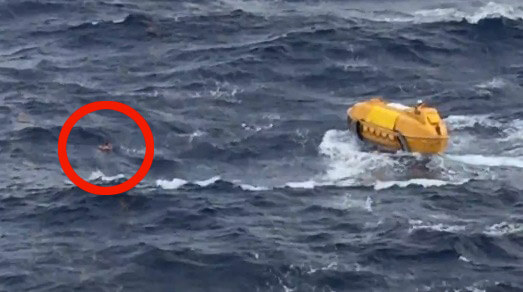 Video Watch As Disney Cruise Line Rescues Overboard Royal