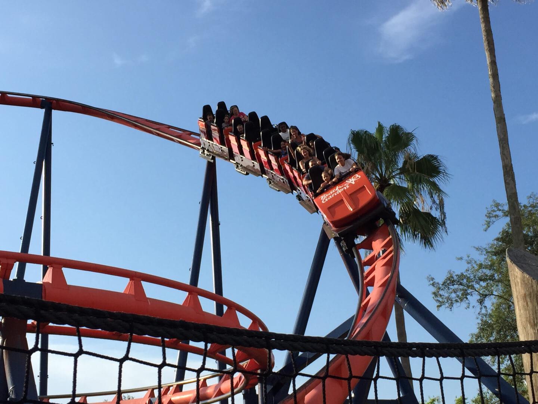 Scorpion Busch Gardens Closed Garden Ftempo
