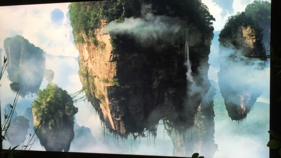 Photo Aug 14, 2 06 37 PM
