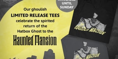 hp_dp_haunted-mansion-hatbox-ghost-tee_20150810