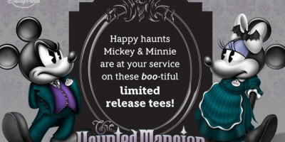 hp_dp_stand-mm_haunted-mansion-flash_20150907