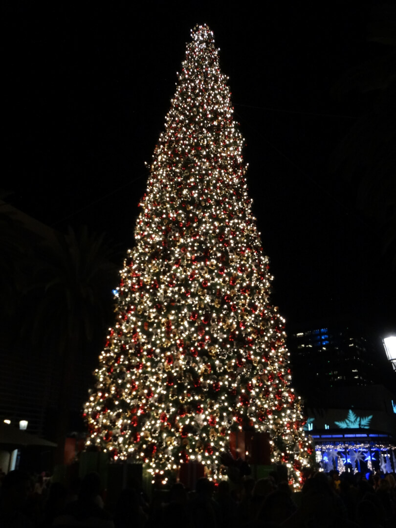 Fashion Island s Annual Holiday Tree Lighting Ceremony 93