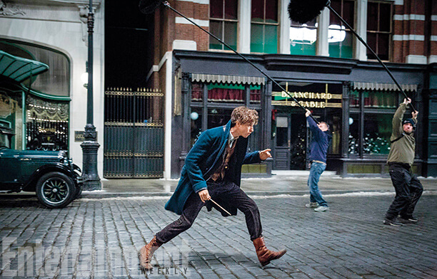 I Where Beasts Newt Scamander'sfantastic Can Get And pUqMVjLSzG