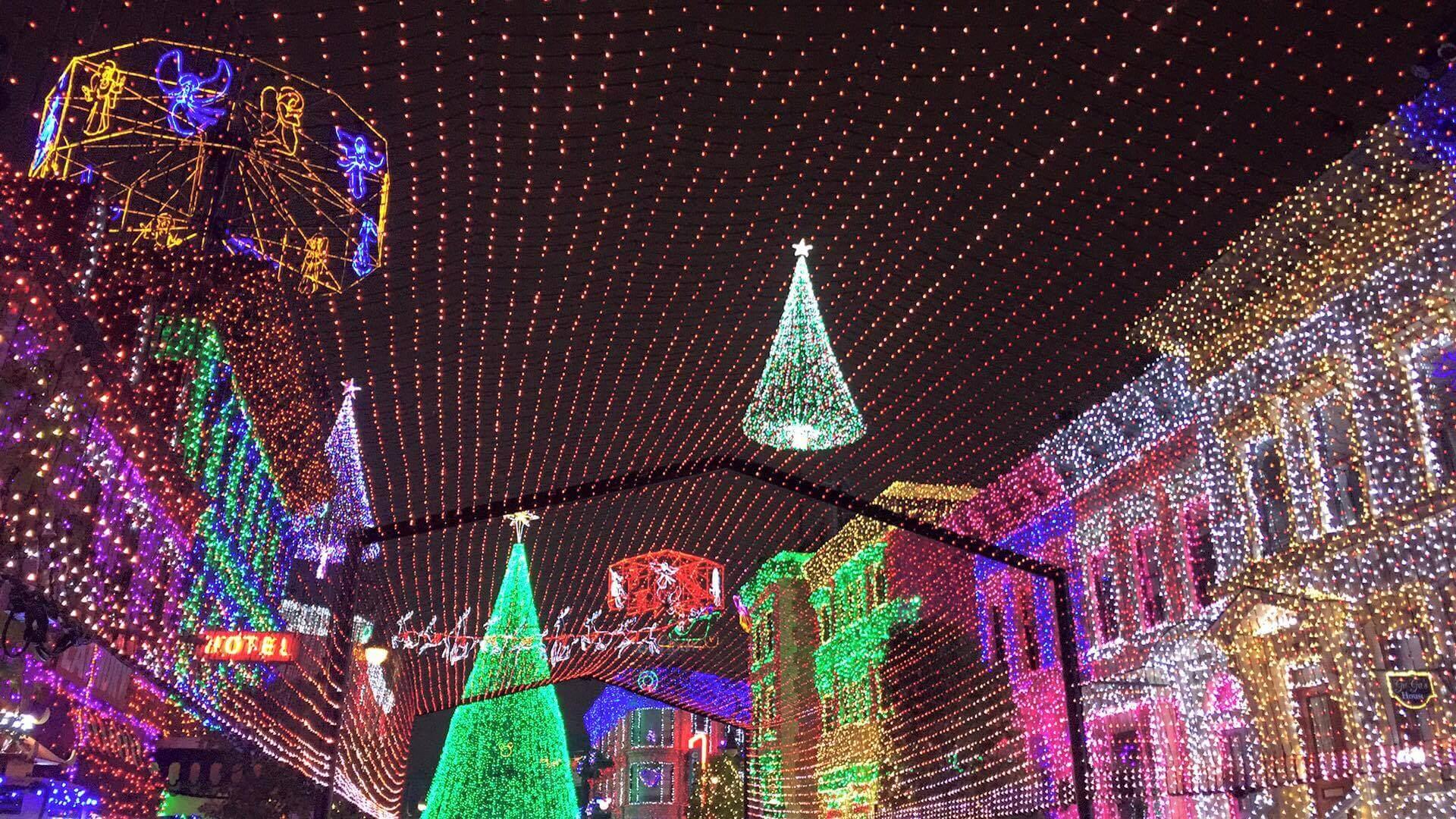 Hollywood Studios Christmas Lights