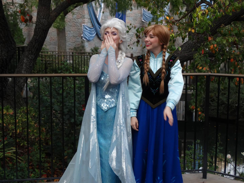 anna and elsa meet greet in disneyland