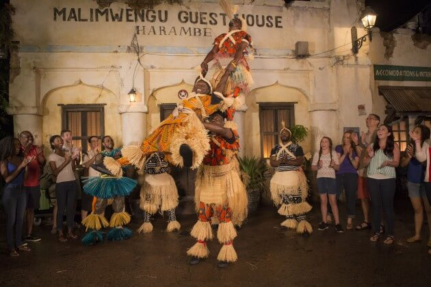 Harambe Wildlife Parti at Disney's ANimal Kingdom at Night