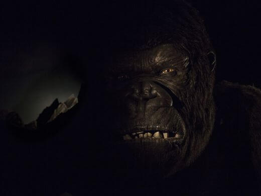 636004849405777933-07-Skull-Island-Reign-of-Kong-Animated-Figure