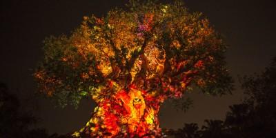 tree of life awakening