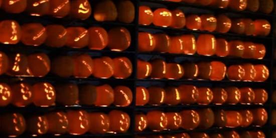 pumpkin-orchestra