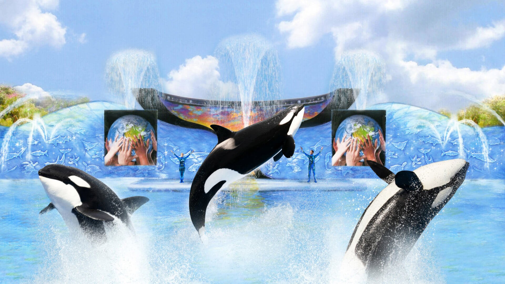 Orca Training Sessions now a part of guest experience at SeaWorld San Diego