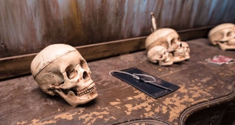 Haunted Scarehouse And Escape Rooms