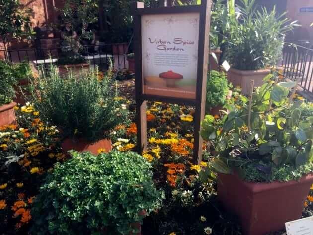 Urban Spice Garden (Morocco)