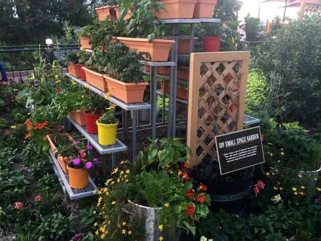 Epcot Flower & Garden 2017