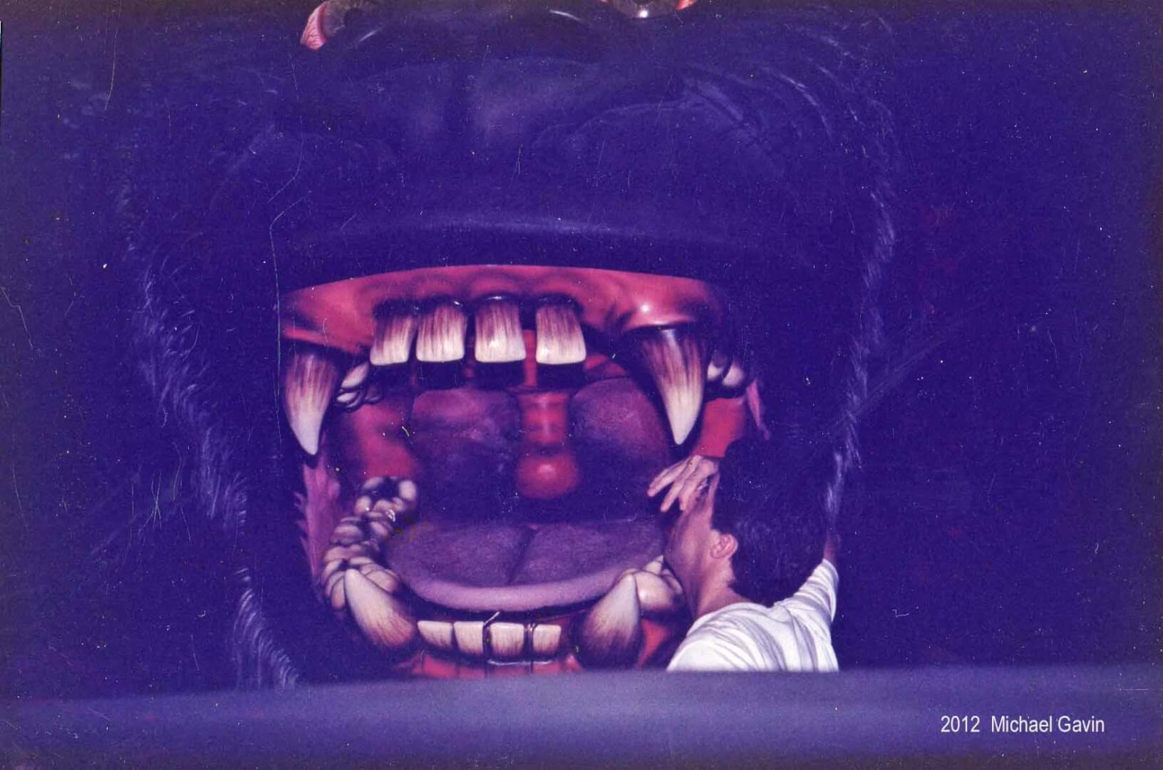 Attraction Profiles: The classic Kongfrontation at ...