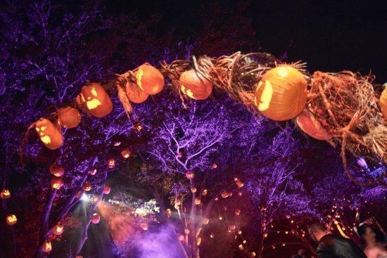 universal scarezone halloween horror nights