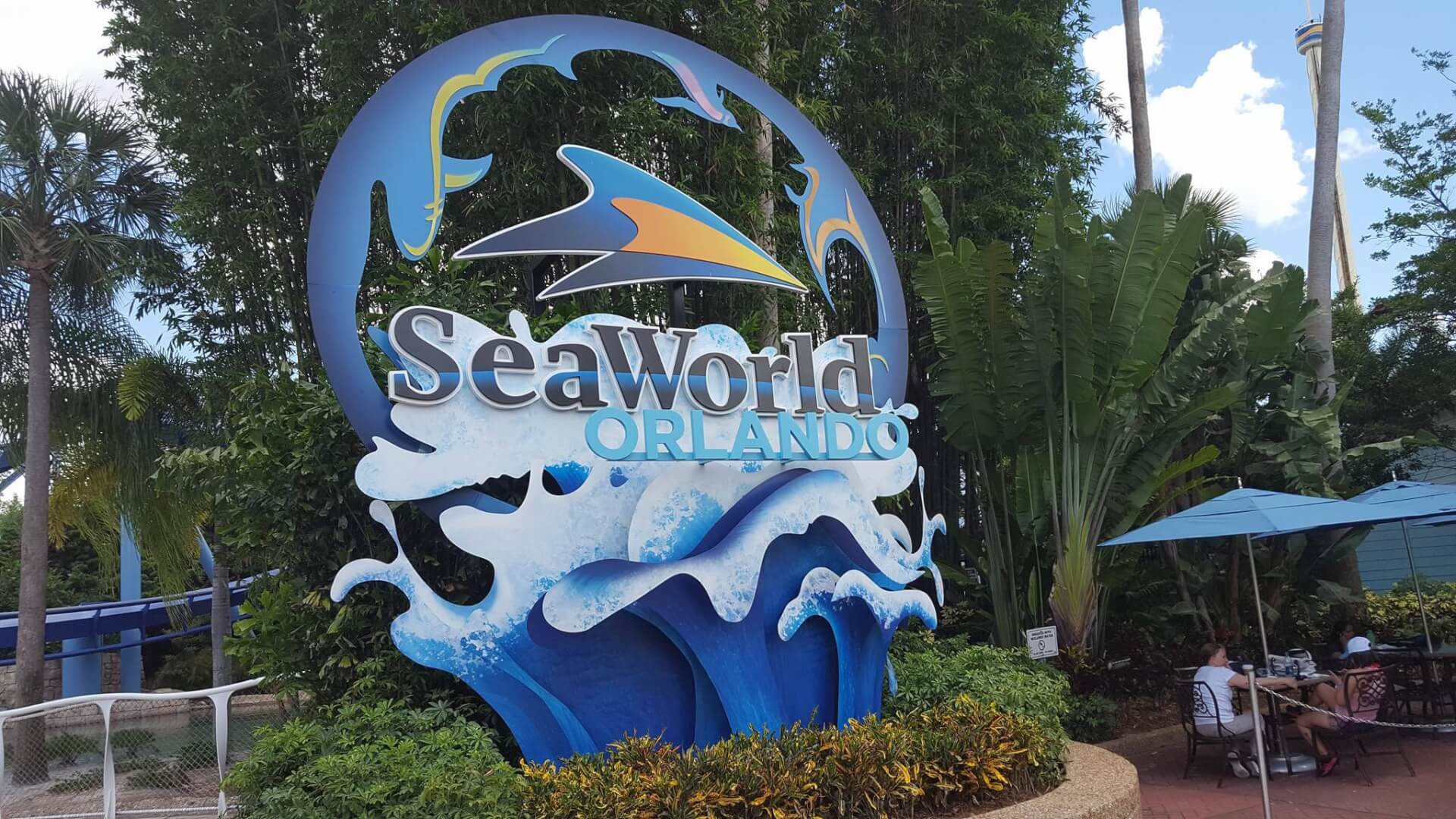 SeaWorld Layoffs Leave 350 Employees Jobless As Theme Park Struggles