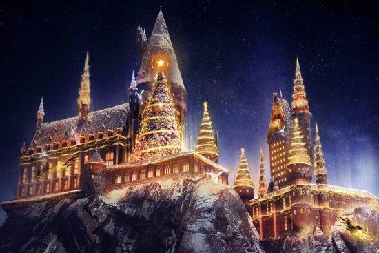Universal Wizarding World Christmas