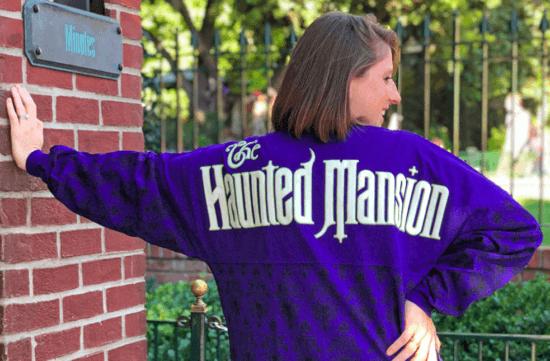 Disney attraction-inspired spirit jersey