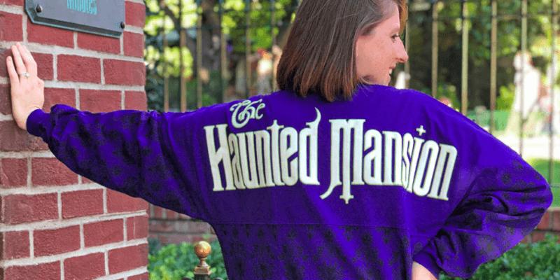 Disney attraction spirit jerseys