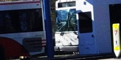 epcot bus crash