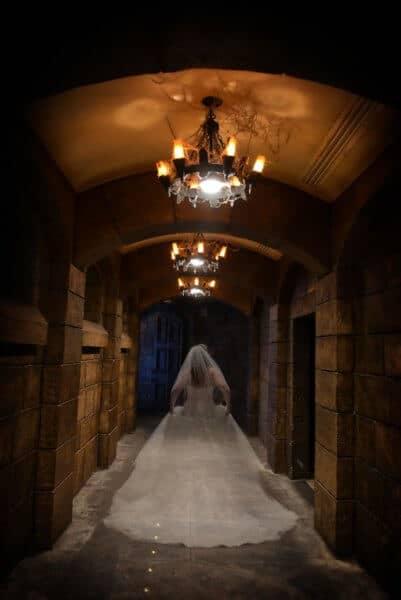 Haunted Mansion wedding dress