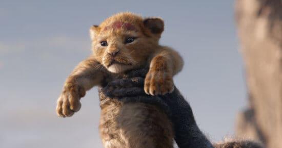 Lion King Simba