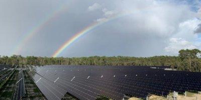 disney solar facility