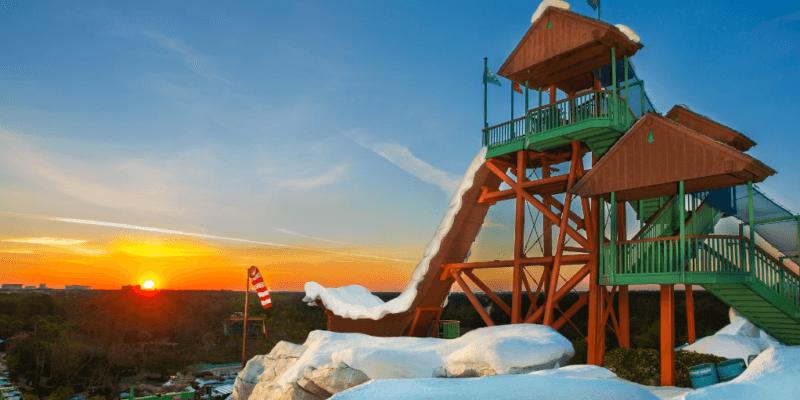 disney world blizzard beach water slide