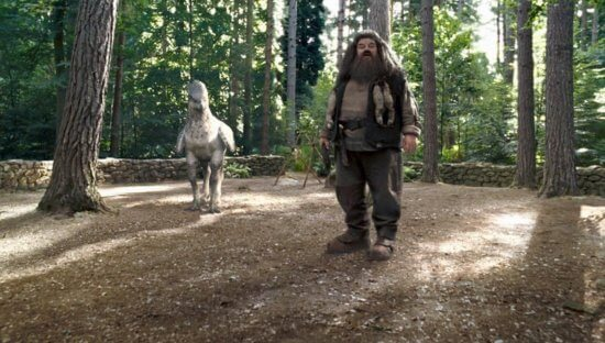 New details revealed of Hagrid's Magical Creatures Motorbike Adventure