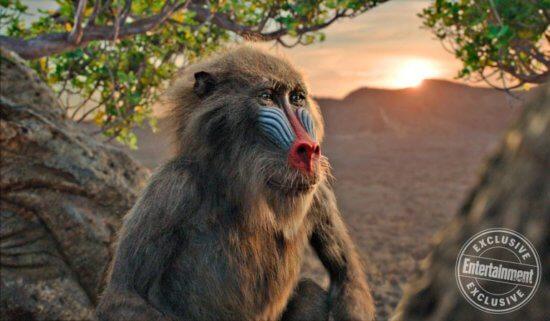 Rafiki in The Lion King