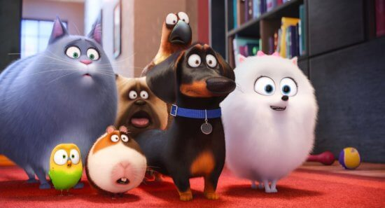 """Universal Studios Hollywood to get """"The Secret Life of Pets"""" attraction"""