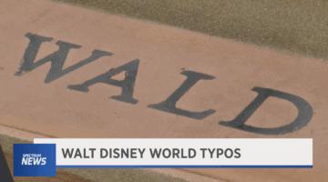 Wald Disney world misspelling