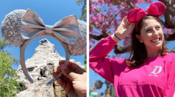 Magic Mirror Metallic and Imagination Pink Ears